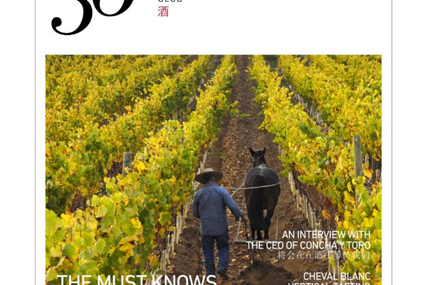 1765 Chilewine Magazine6