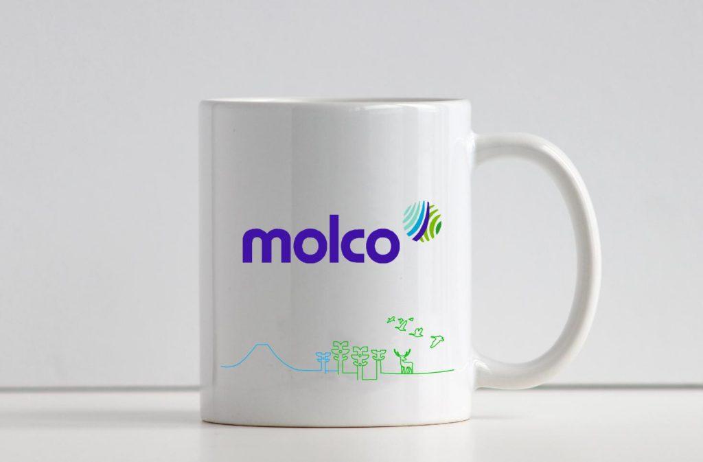 Branding MolcoHouses AdMG1
