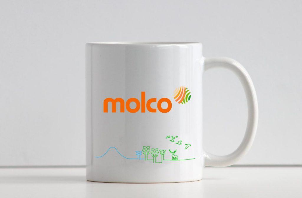 Branding MolcoHouses AdMG2