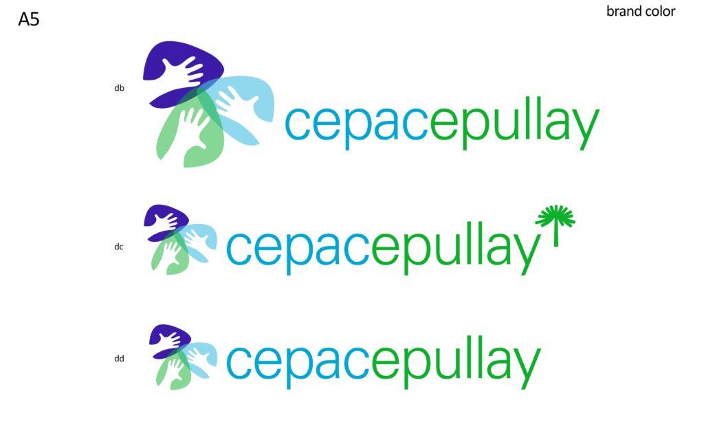 Estudio Branding Epullay V41