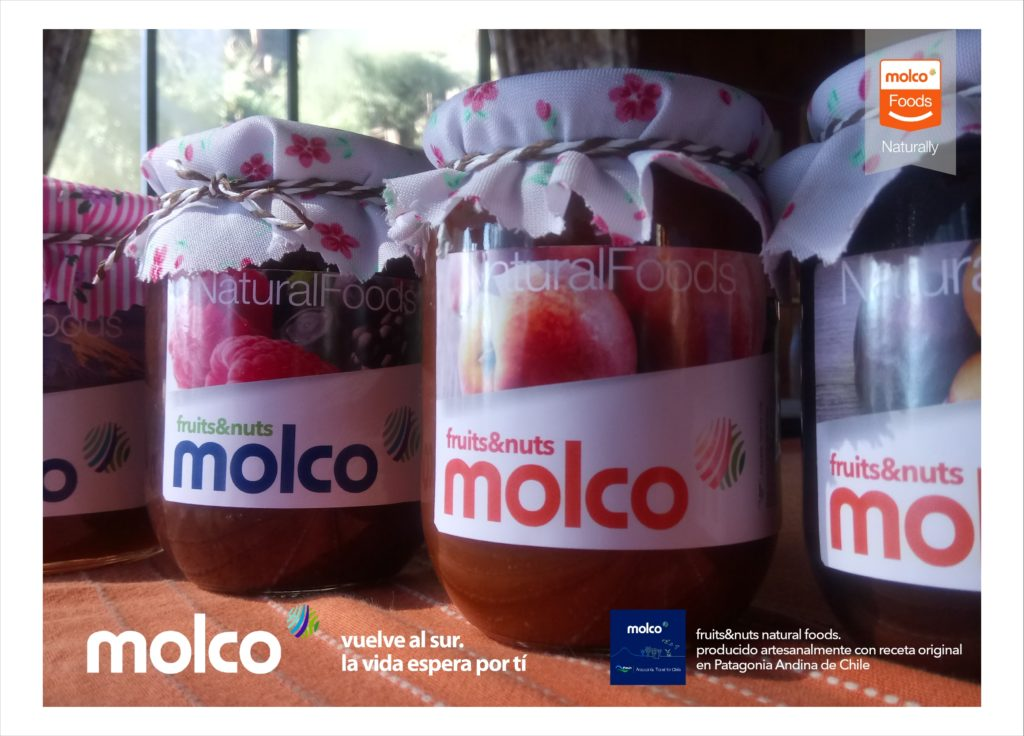 Molco Postal Cards Natural Foods5