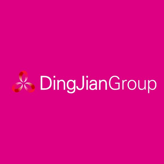 DJG Brand 8 DingJian Group
