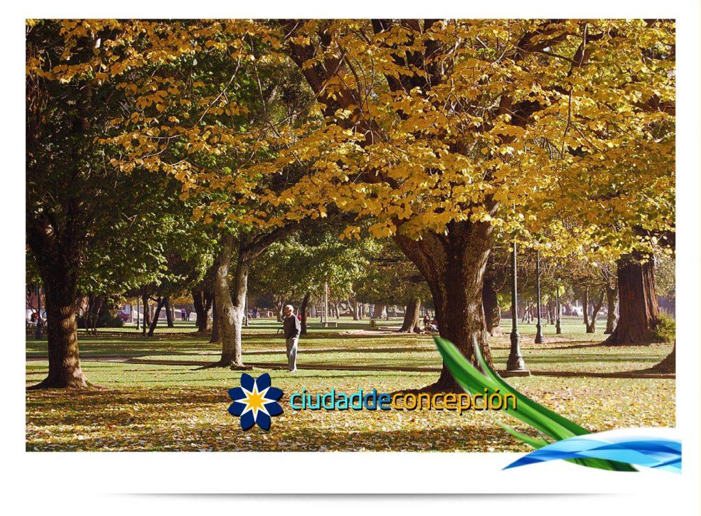 Ciudad de Concepcion CityBrand Image 98