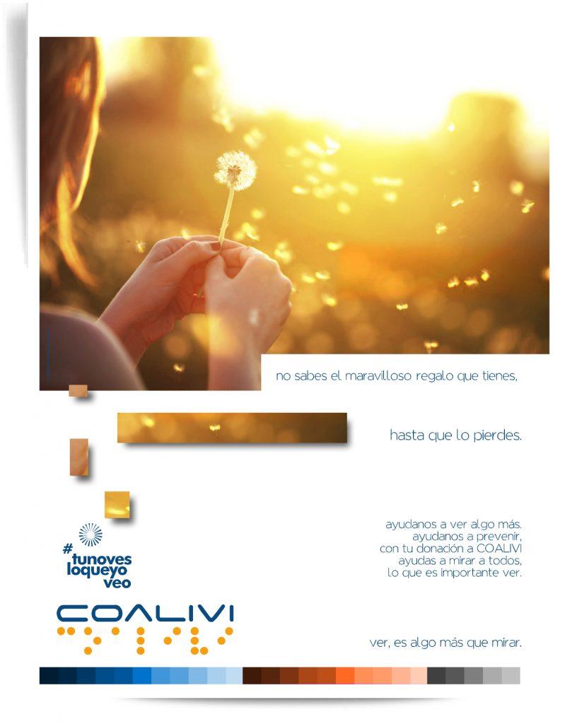 Coalivi Brand3