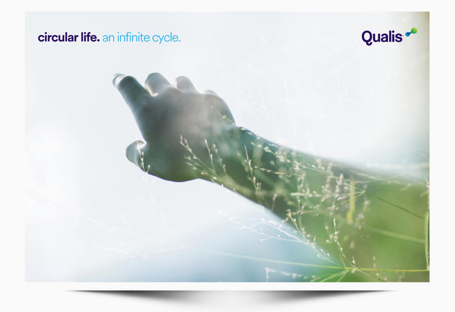 Qualis Brand Studio v2 93 A WEB